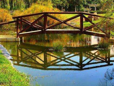 puente-madera1